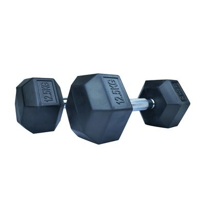 دمبل اس اچ ارمدل b4 وزن 125 کیلوگرم بسته 2 عددی